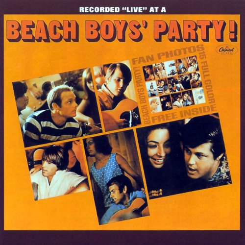 Beach boys party 1965