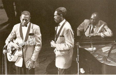 Big walter hornton with floyd jones and sunnyland slim