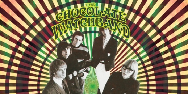 Chocolate watch band 5