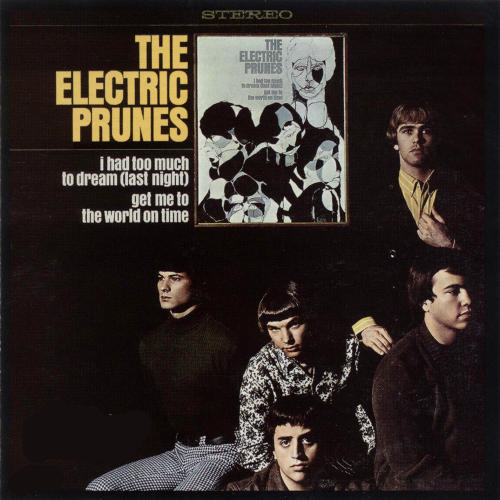 Electric prunes i had too much