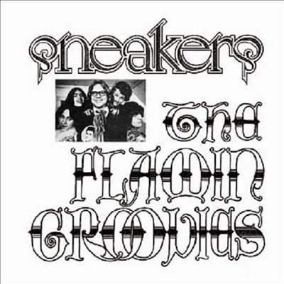 Flamin groovies sneakers