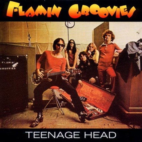 Flamin groovies teenage