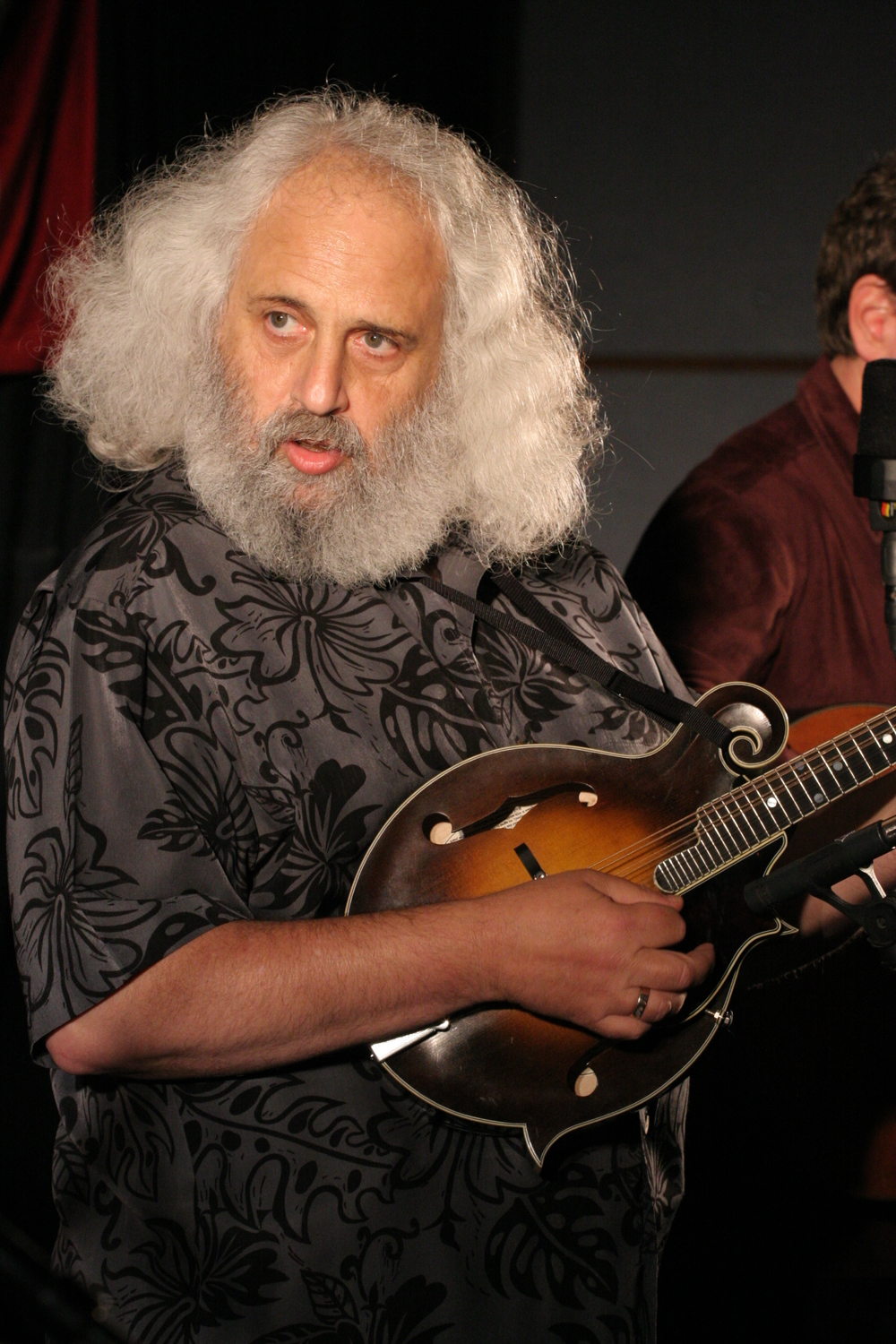 Jerry garcia david grisman