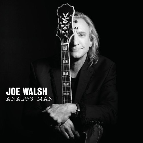 Joe walsh analog man 2012