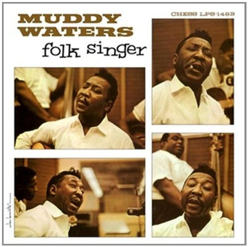 Muddy waters folk singer 1964