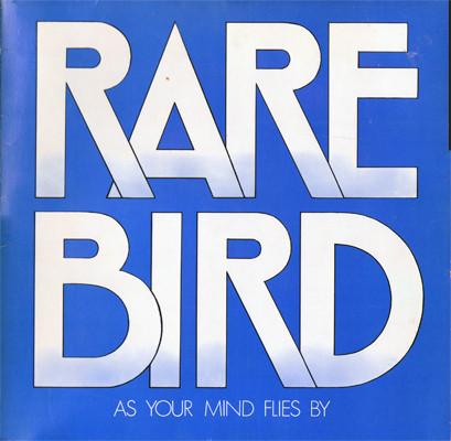 Rare bird as your mind flies by 2