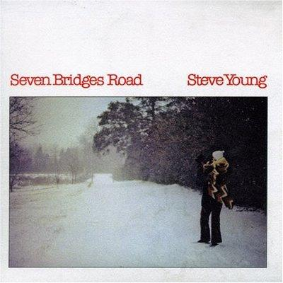 Steve young seven bridges
